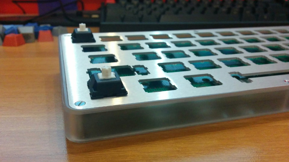 whitefox-dev-1